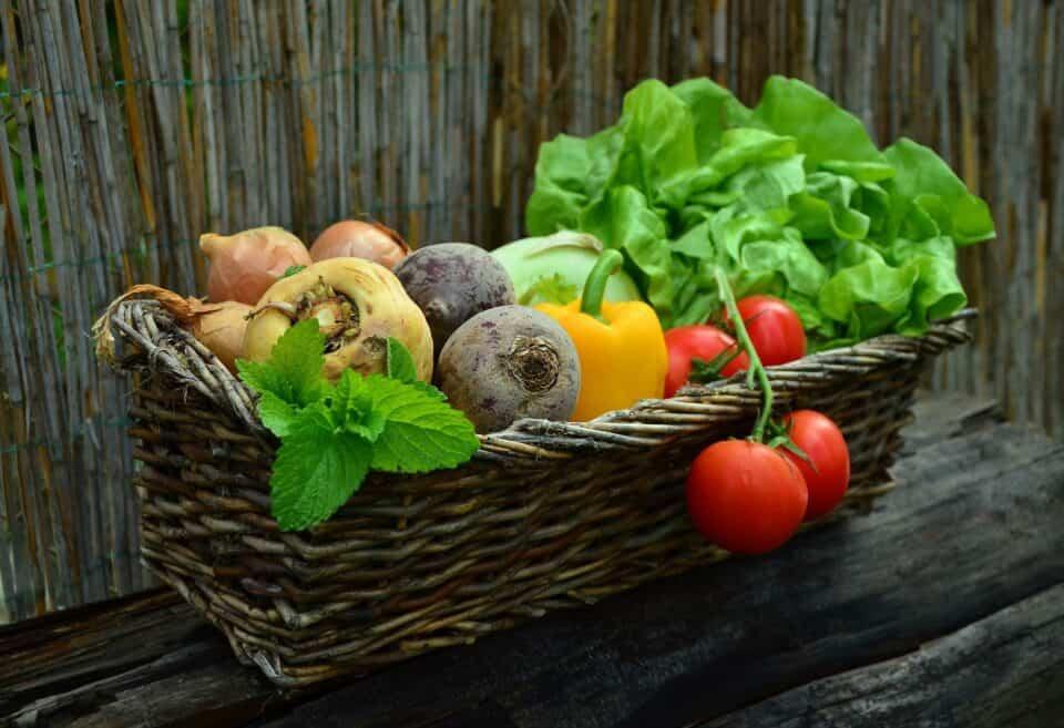 Alimentos que fortalecem os dentes: quais são os melhores?