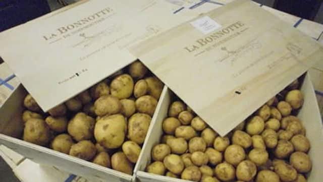 Fotografia das Batatas La Bonnotte para ilustração do item