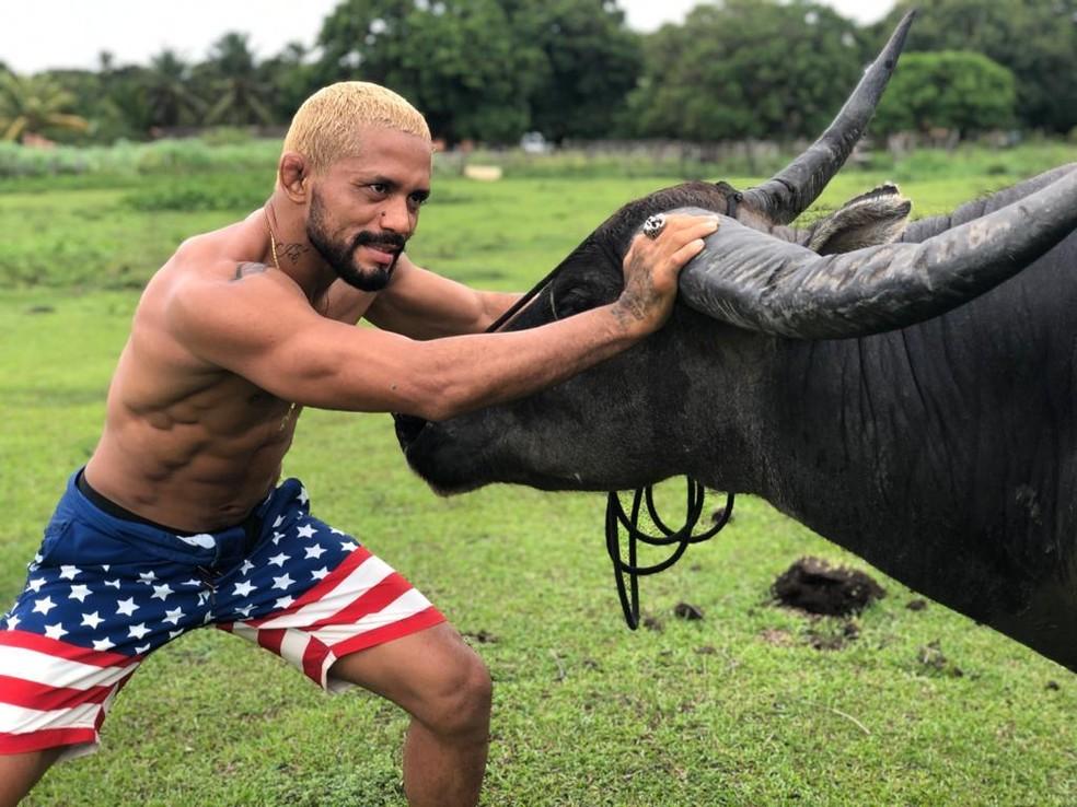 Deiveson Figueiredo, quem é? História do lutador de MMA