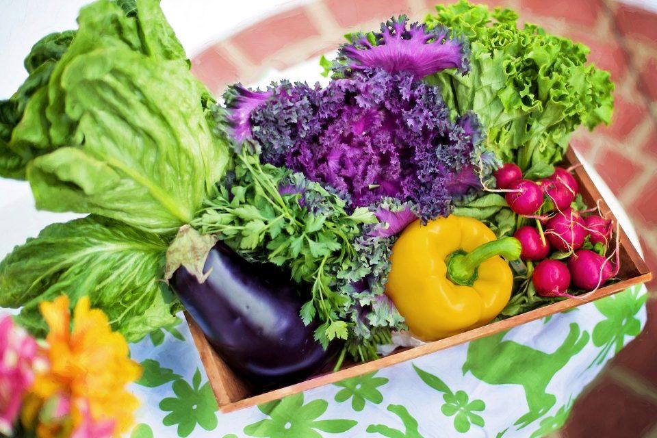 Diferença entre verdura e legume: qual é e como identificar?