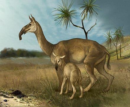 Ilustração de animais extintos e pré-históricos para ilustração do item