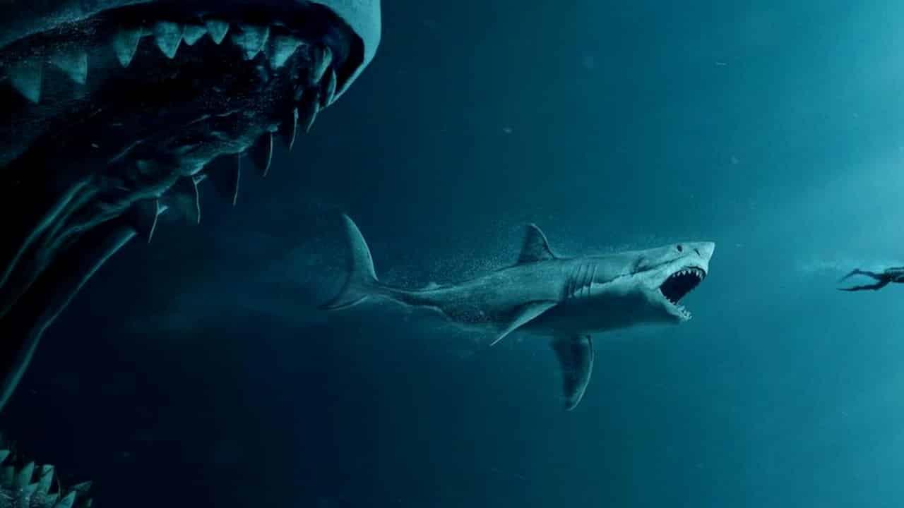Megalodon: como o maior tubarão do mundo despareceu?